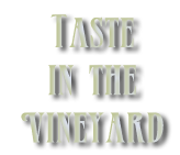 taste in the vineyard